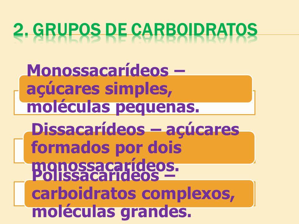 2. GRUPOS DE CARBOIDRATOS
