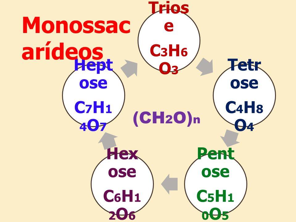 Monossacarídeos Triose C3H6O3 Tetrose C4H8O4 Pentose C5H10O5 Hexose