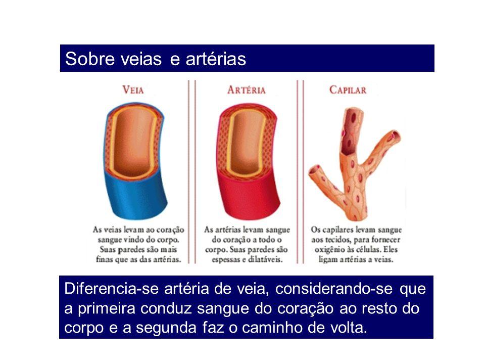 Sobre veias e artérias