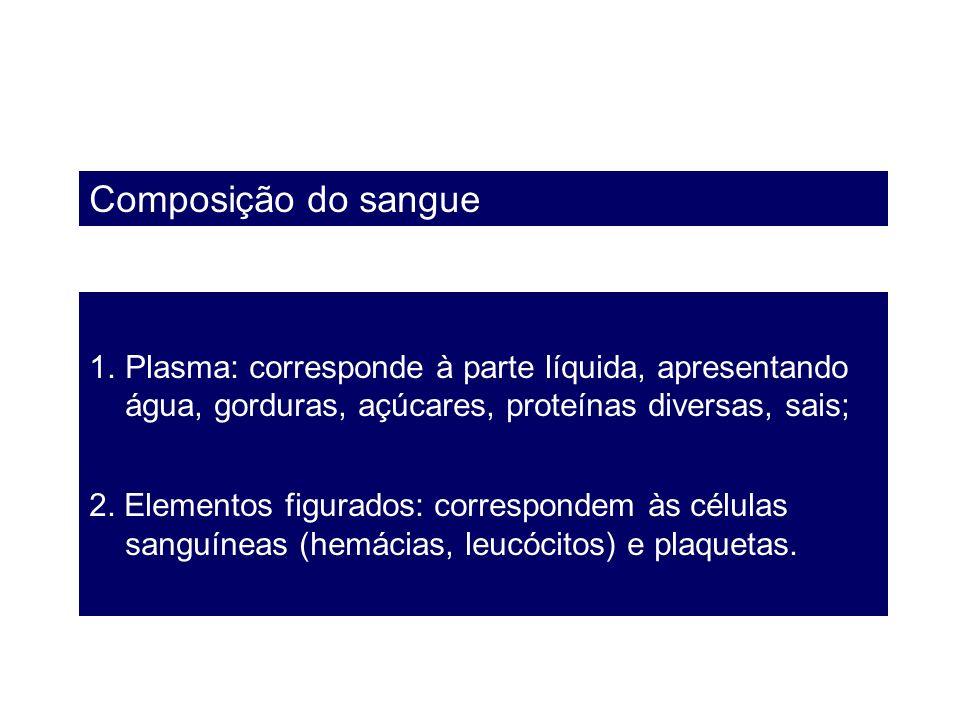 Composição do sangue Plasma: corresponde à parte líquida, apresentando água, gorduras, açúcares, proteínas diversas, sais;
