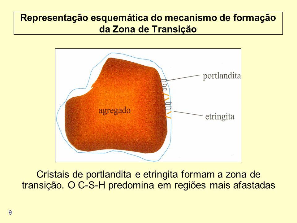 Representação esquemática do mecanismo de formação da Zona de Transição