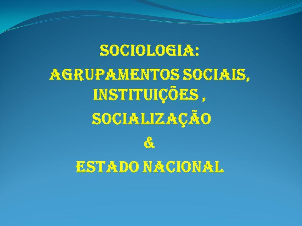 AGRUPAMENTOS SOCIAIS, INSTITUIÇÕES ,