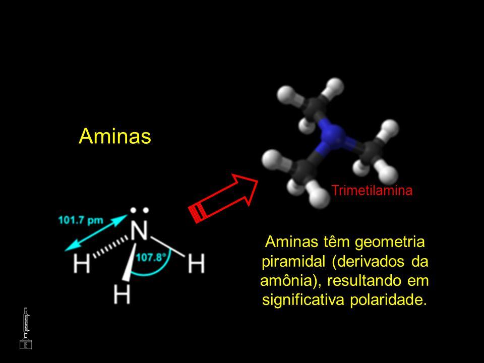 AminasTrimetilamina.