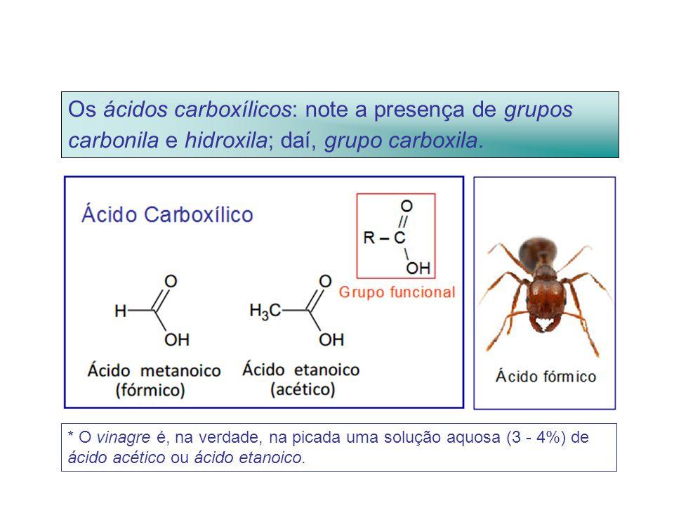 Os ácidos carboxílicos: note a presença de grupos carbonila e hidroxila; daí, grupo carboxila.