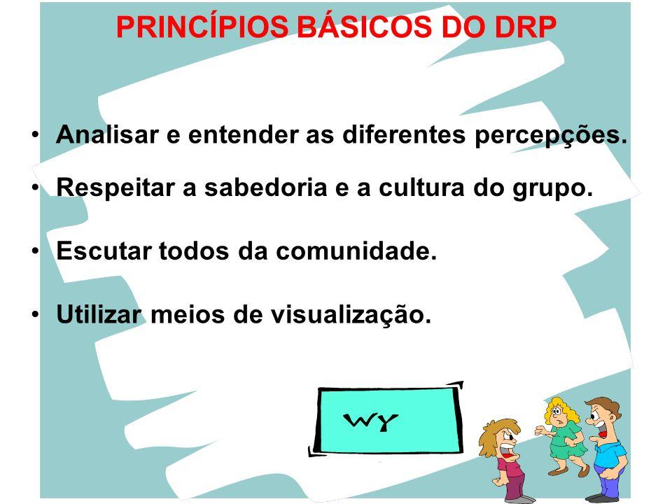 PRINCÍPIOS BÁSICOS DO DRP
