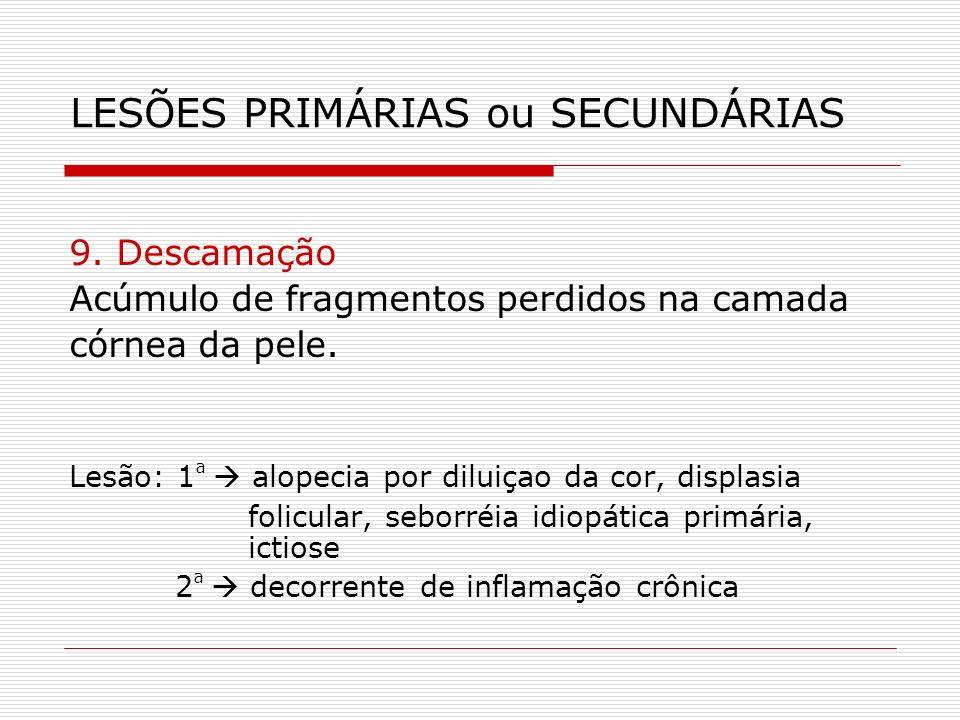 LESÕES PRIMÁRIAS ou SECUNDÁRIAS