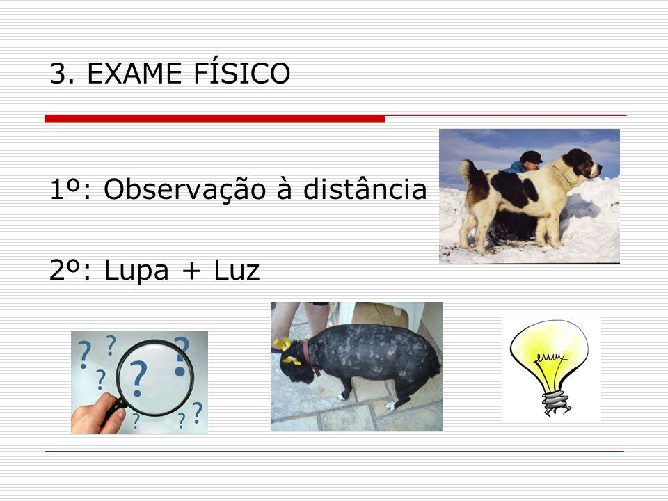 3. EXAME FÍSICO 1º: Observação à distância 2º: Lupa + Luz