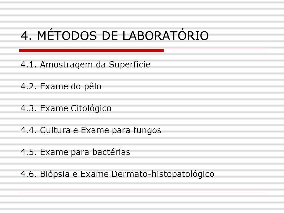 4. MÉTODOS DE LABORATÓRIO