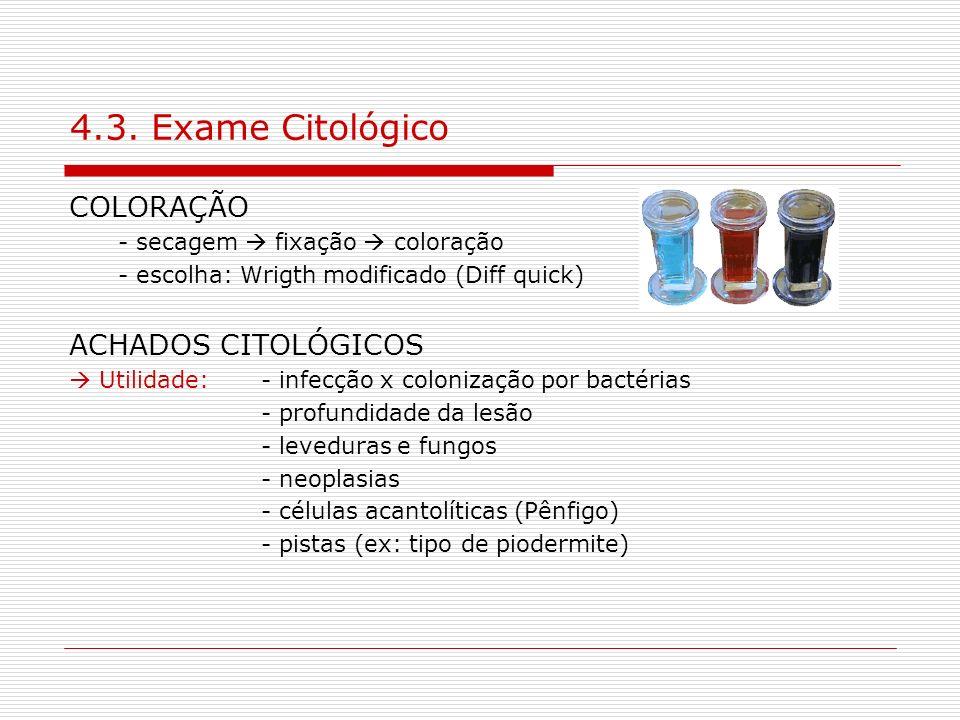 4.3. Exame Citológico COLORAÇÃO ACHADOS CITOLÓGICOS
