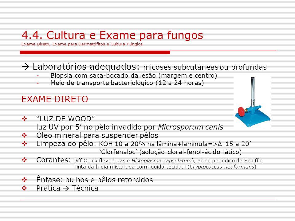 4.4. Cultura e Exame para fungos Exame Direto, Exame para Dermatófitos e Cultura Fúngica