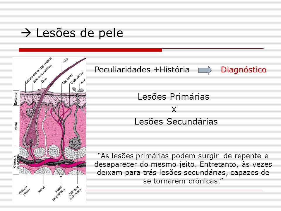  Lesões de pele x Lesões Secundárias Lesões Primárias