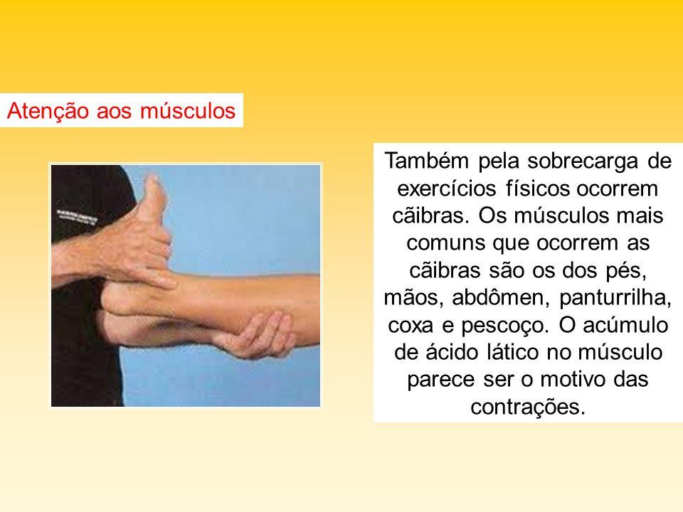 Atenção aos músculos