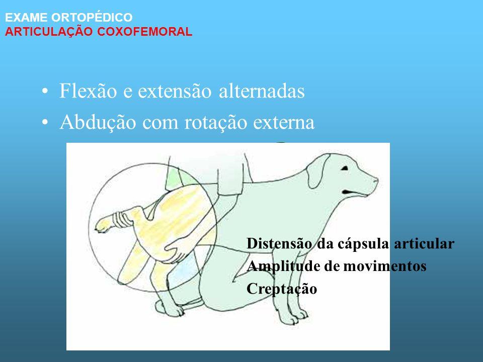 Flexão e extensão alternadas Abdução com rotação externa