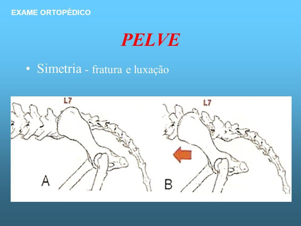 EXAME ORTOPÉDICO PELVE Simetria - fratura e luxação