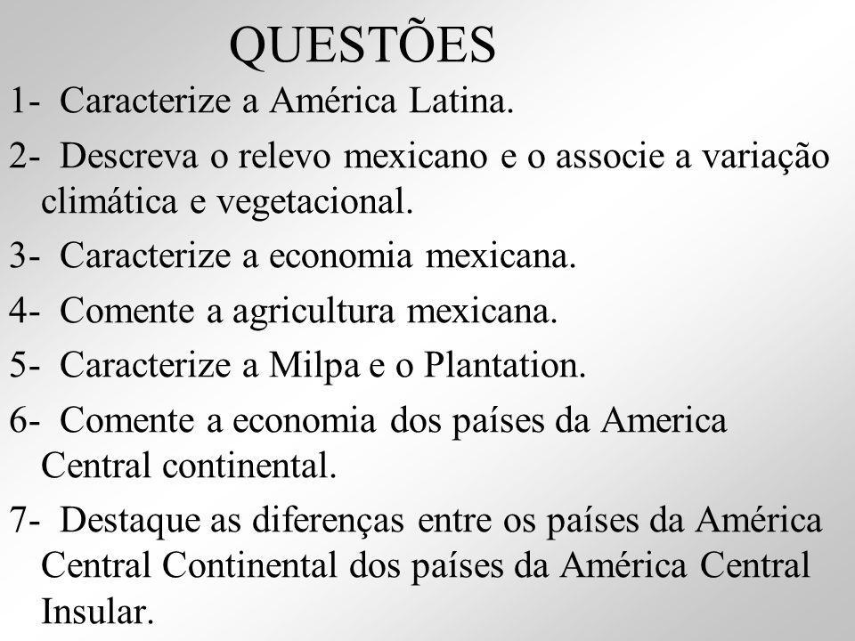 QUESTÕES 1- Caracterize a América Latina.