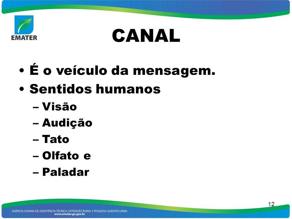 CANAL É o veículo da mensagem. Sentidos humanos Visão Audição Tato