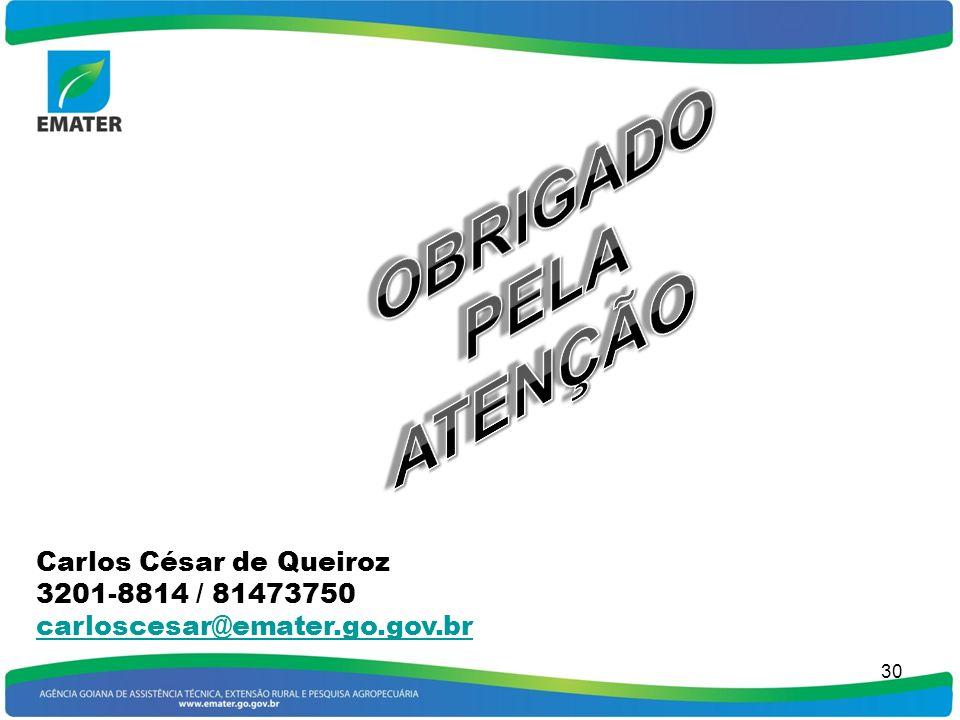 OBRIGADO PELA ATENÇÃO Carlos César de Queiroz 3201-8814 / 81473750