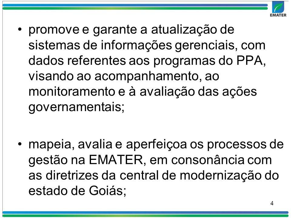 promove e garante a atualização de sistemas de informações gerenciais, com dados referentes aos programas do PPA, visando ao acompanhamento, ao monitoramento e à avaliação das ações governamentais;