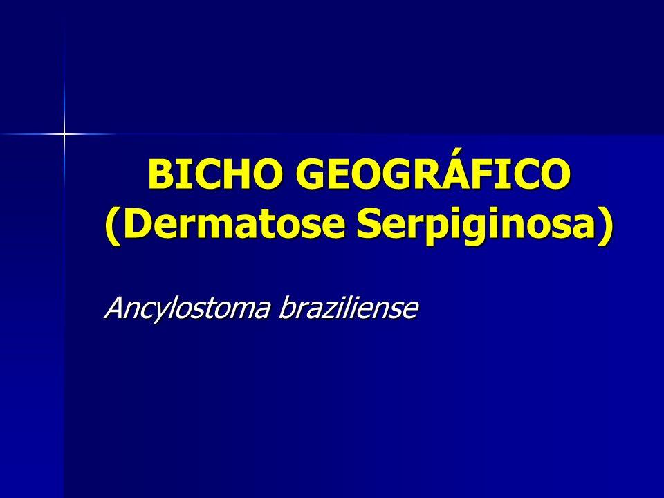 BICHO GEOGRÁFICO (Dermatose Serpiginosa)