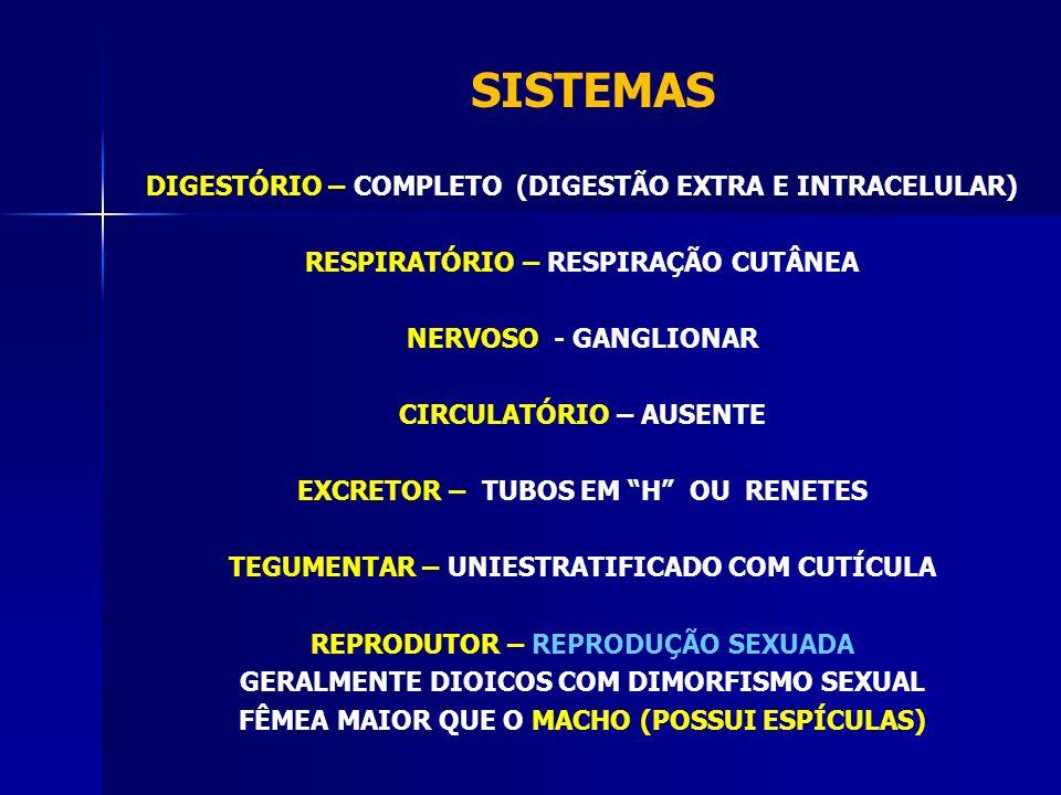 SISTEMAS DIGESTÓRIO – COMPLETO (DIGESTÃO EXTRA E INTRACELULAR)