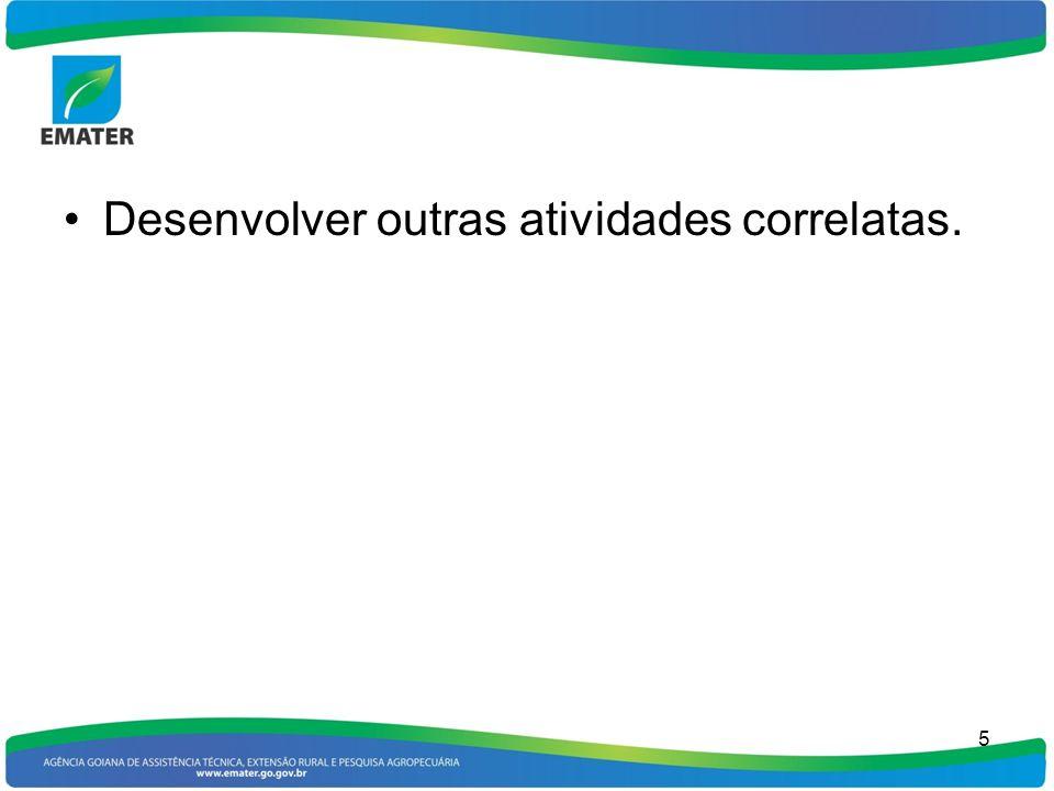 Desenvolver outras atividades correlatas.