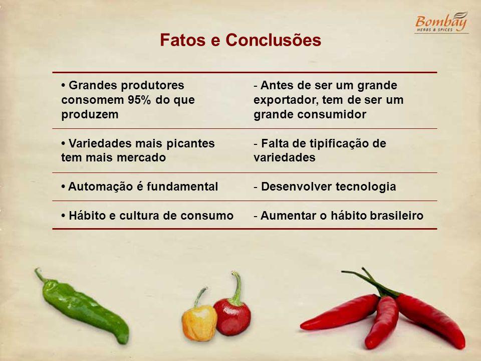 Fatos e Conclusões • Grandes produtores consomem 95% do que produzem