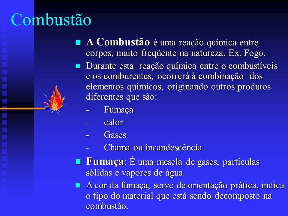 Combustão A Combustão é uma reação química entre corpos, muito freqüente na natureza. Ex. Fogo.