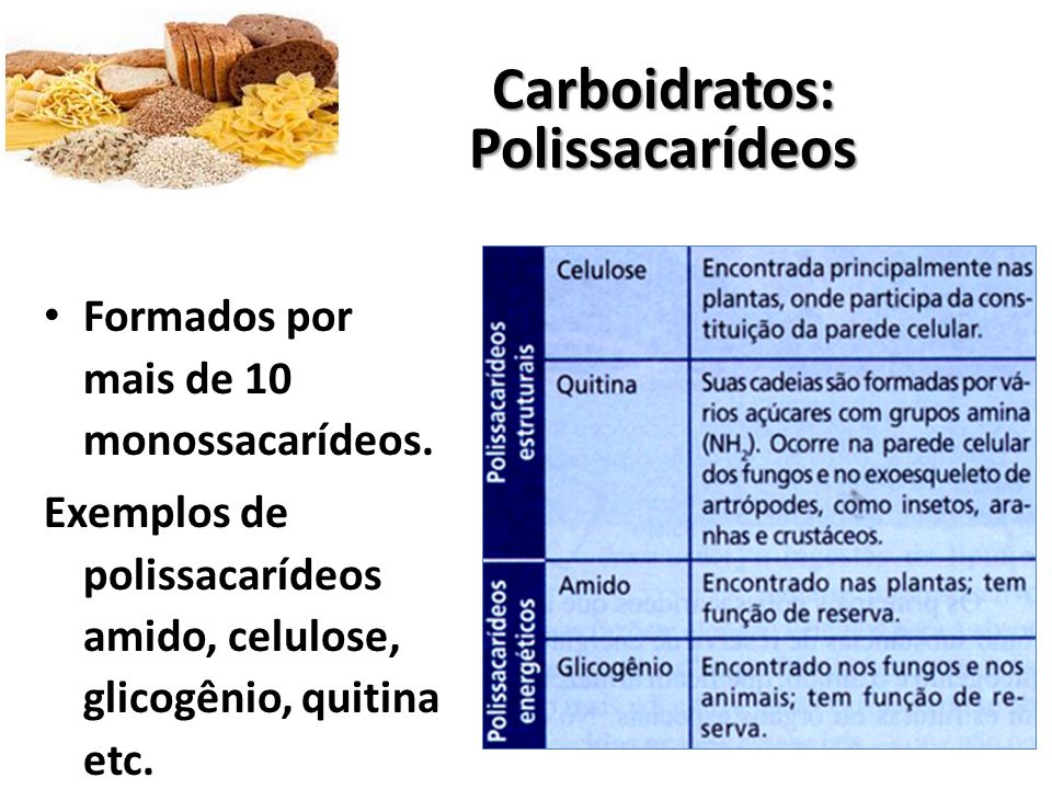 Carboidratos: Polissacarídeos
