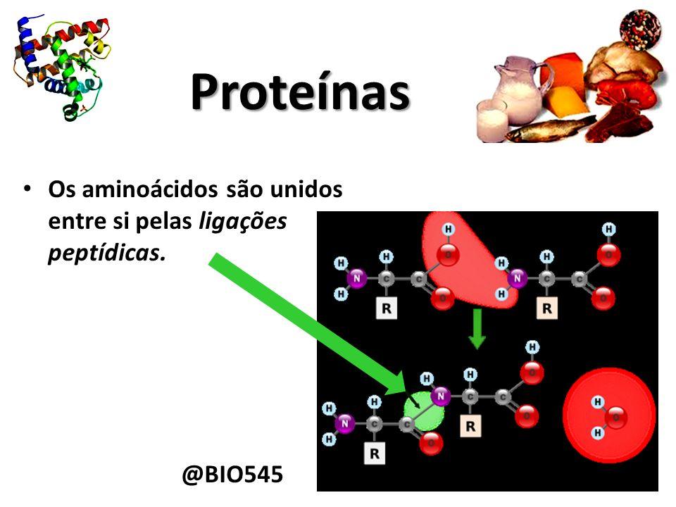 Proteínas Os aminoácidos são unidos entre si pelas ligações peptídicas. @BIO545