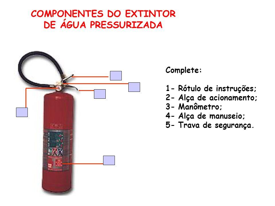 COMPONENTES DO EXTINTOR
