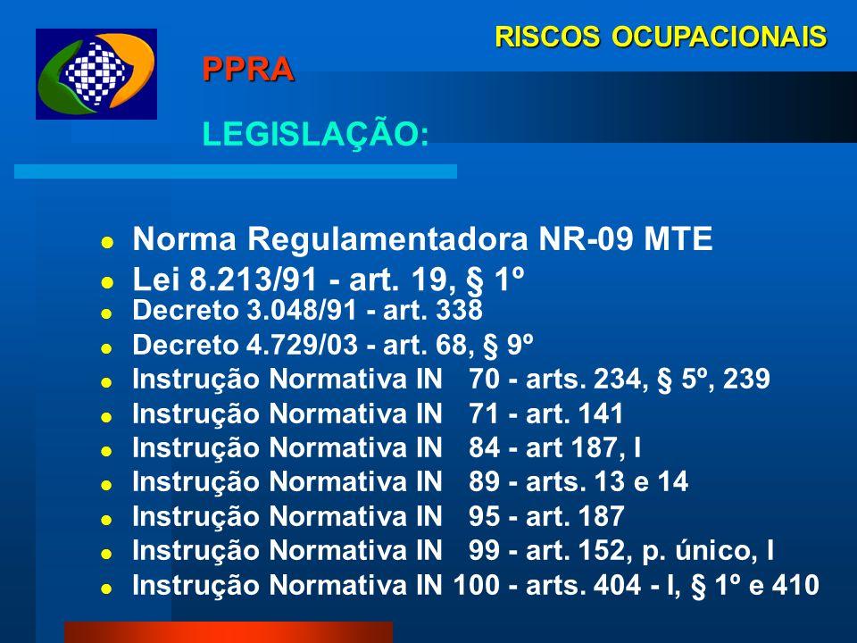 Norma Regulamentadora NR-09 MTE Lei 8.213/91 - art. 19, § 1º