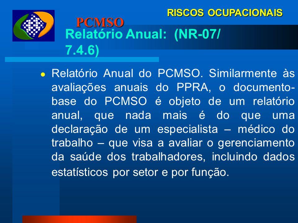 Relatório Anual: (NR-07/ 7.4.6)