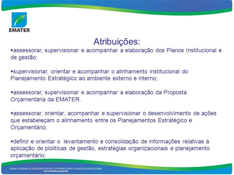 Atribuições: assessorar, supervisionar e acompanhar a elaboração dos Planos Institucional e de gestão;