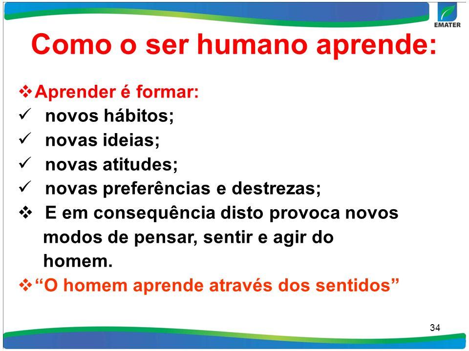 Como o ser humano aprende: