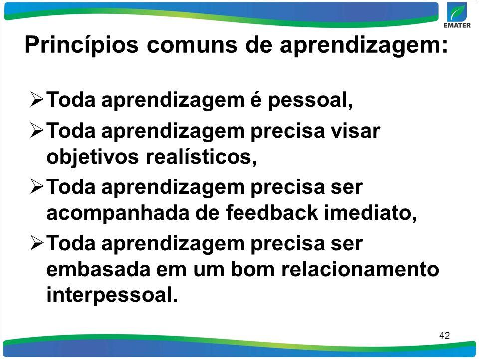 Princípios comuns de aprendizagem: