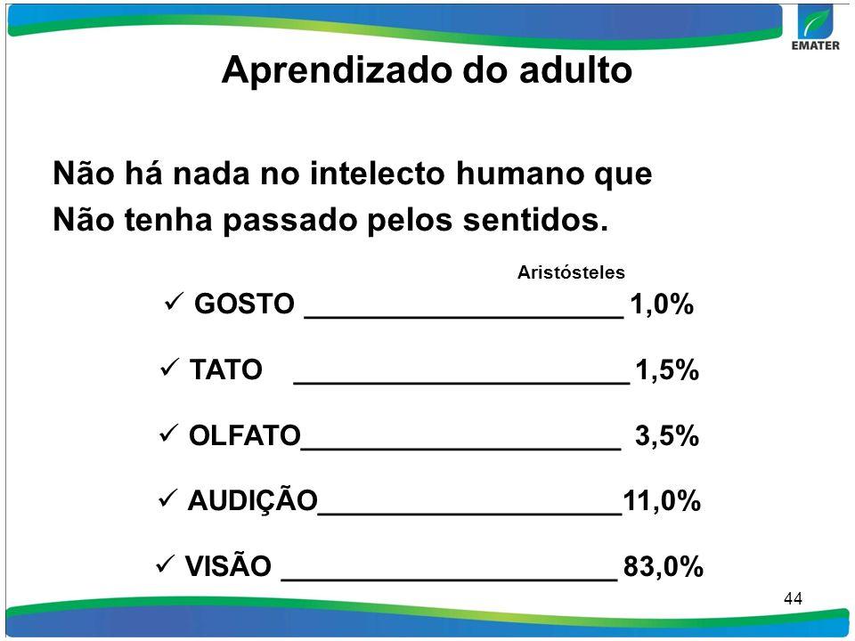 Aprendizado do adulto Aristósteles Não há nada no intelecto humano que