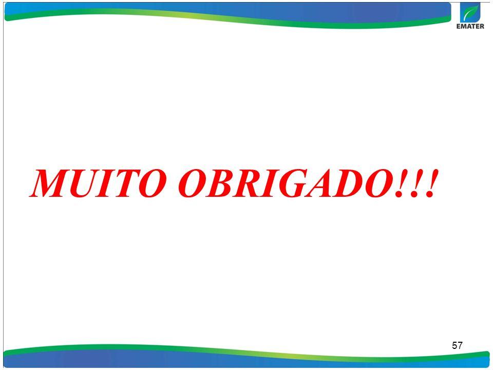 MUITO OBRIGADO!!! 57 57