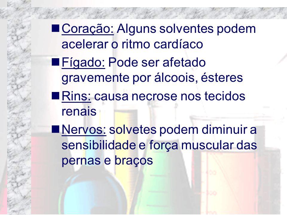 Coração: Alguns solventes podem acelerar o ritmo cardíaco