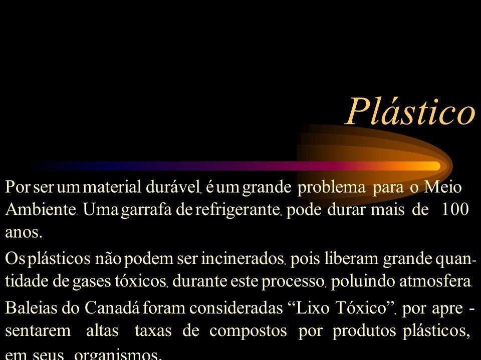Plástico Por ser um material durável, é um grande problema para o Meio Ambiente. Uma garrafa de refrigerante, pode durar mais de 100 anos.