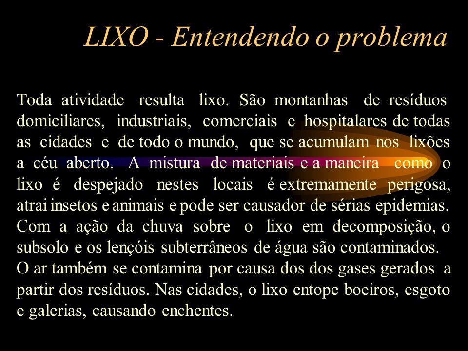LIXO - Entendendo o problema