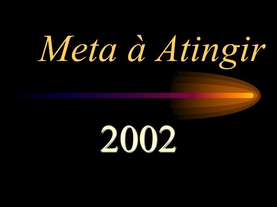 Meta à Atingir 2002