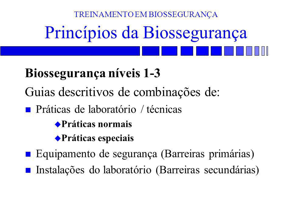 TREINAMENTO EM BIOSSEGURANÇA Princípios da Biossegurança