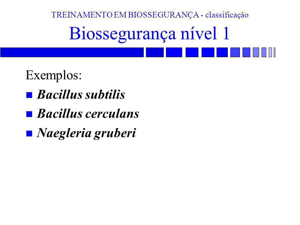 TREINAMENTO EM BIOSSEGURANÇA - classificação Biossegurança nível 1