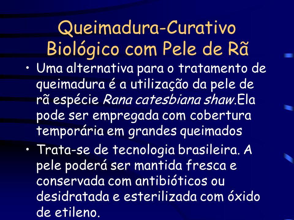 Queimadura-Curativo Biológico com Pele de Rã