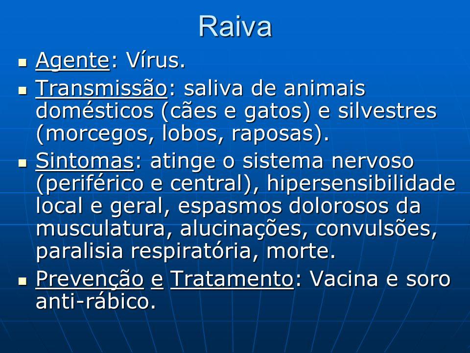 RaivaAgente: Vírus. Transmissão: saliva de animais domésticos (cães e gatos) e silvestres (morcegos, lobos, raposas).