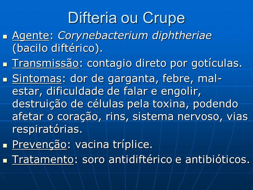 Difteria ou CrupeAgente: Corynebacterium diphtheriae (bacilo diftérico). Transmissão: contagio direto por gotículas.