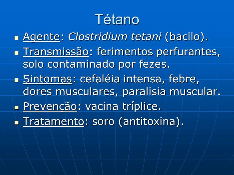 Tétano Agente: Clostridium tetani (bacilo).