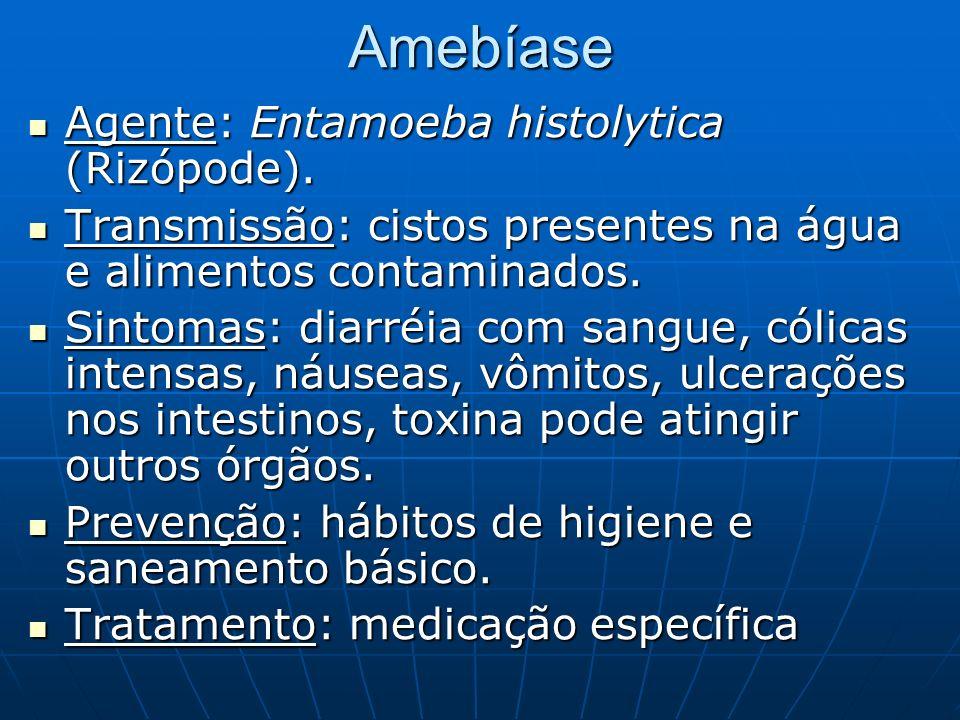 Amebíase Agente: Entamoeba histolytica (Rizópode).