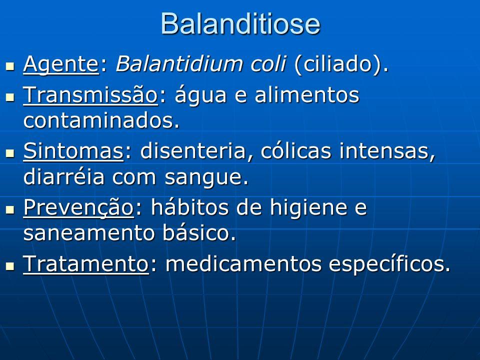 Balanditiose Agente: Balantidium coli (ciliado).
