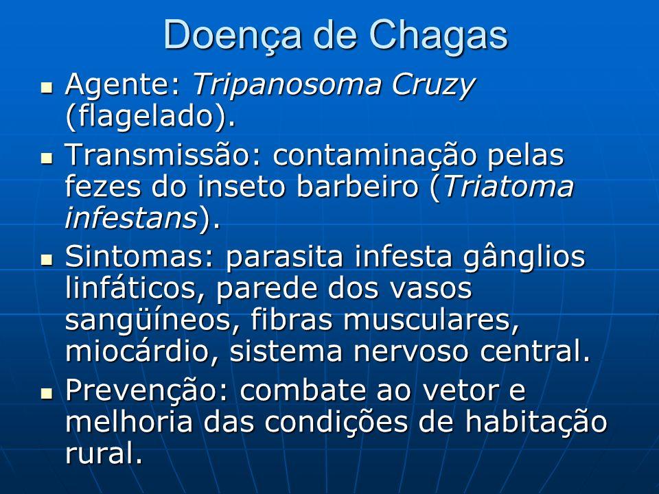 Doença de Chagas Agente: Tripanosoma Cruzy (flagelado).